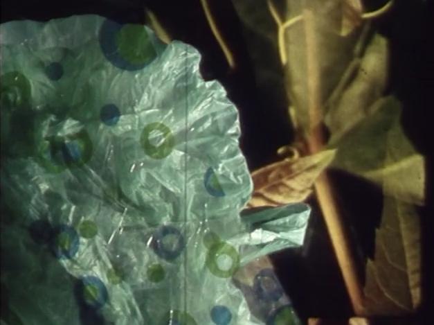 Verdevermelhor
